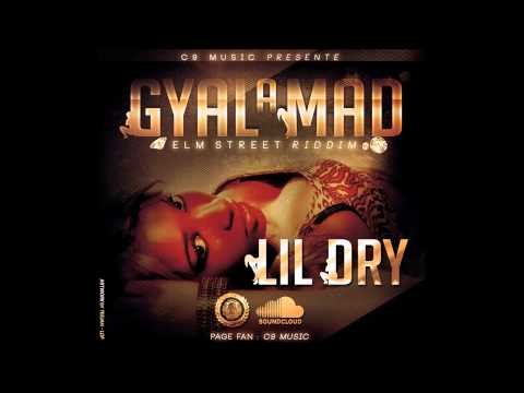 Lil Dry - Gyal a Mad [Yana Nice Music] Fev2014 New