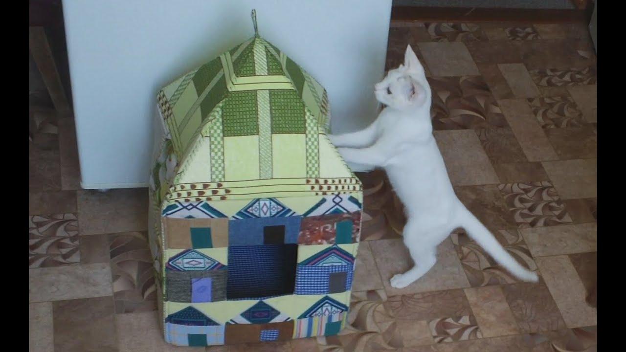 Сделать домик для кота своими руками видео
