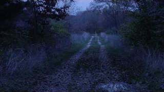 Gettysburg Ghost -- Most Authentic Video to date?