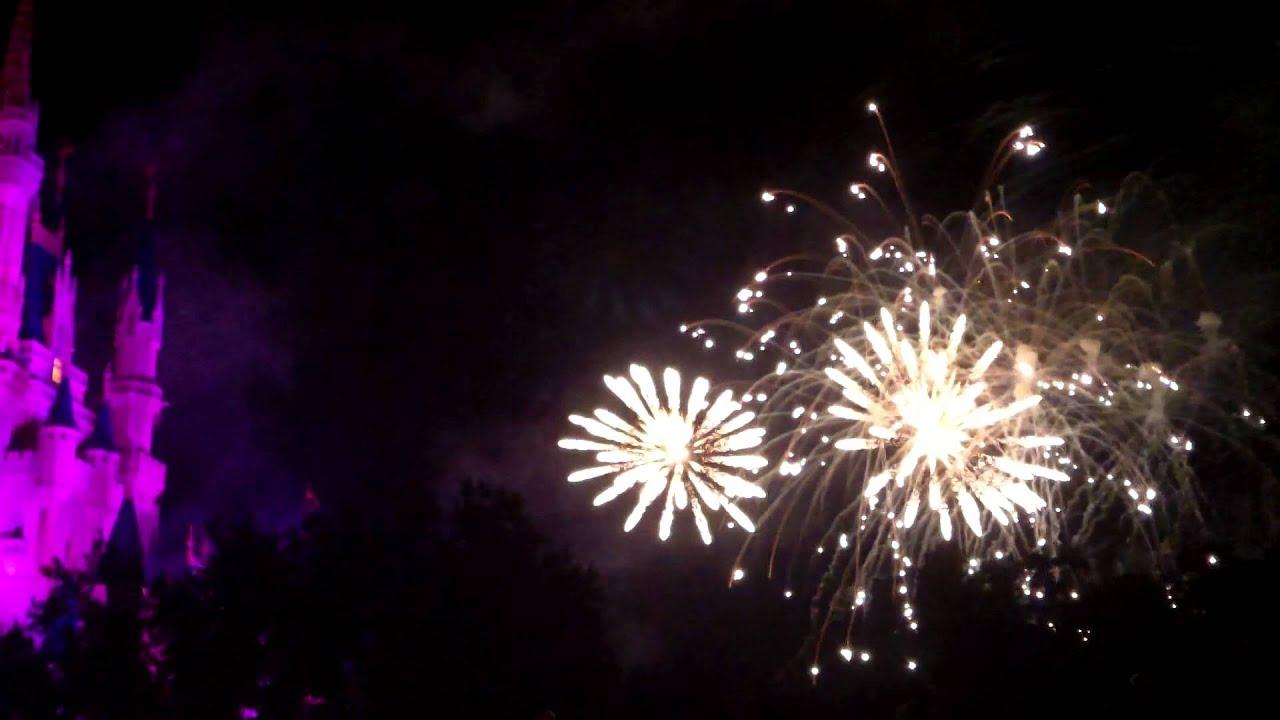 Magic Kingdom Rose Garden Fireworks Magic Kingdom Wishes Fireworks