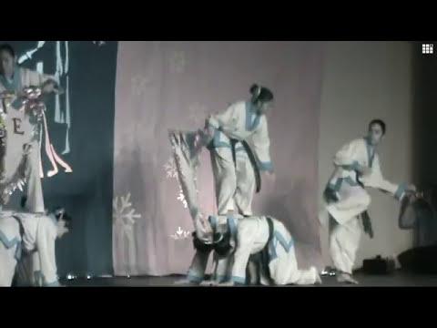 Villa de las Niñas - Demostración de artes marciales-part1