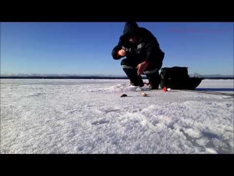 рыбалка на онего 2017