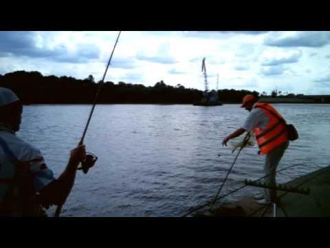 видео рыбалка на фидер в беларуси видео