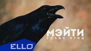 Мэйти - Голос птиц