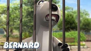 Bernard Bear   The Zoo AND MORE   30 min Compilation   Cartoons for Children