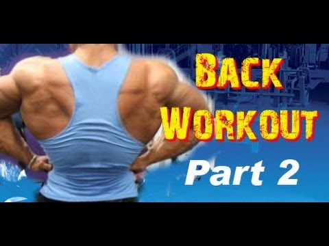 BACK Workout Routine at the GYM