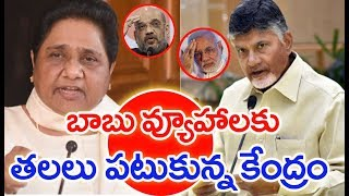 AP CM Chandrababu To Hold Meeting With BSP Leader Mayawati | Mahaa News