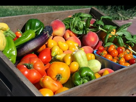 The essential nutrients for healthy fruits and vegetables in gardening