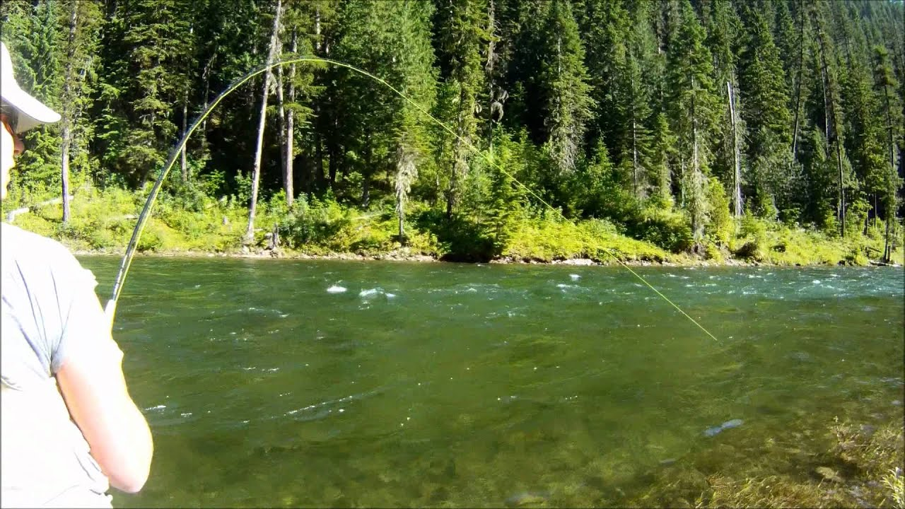 Fly fishing st joe river id july 2011 youtube for Idaho out of state fishing license