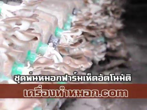 ชุดพ่นหมอกฟาร์มเห็ดอัตโนมัติ ชุดพ่นหมอกติดตั้งง่าย 0990049789