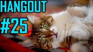 Dansg08 Hangout #25 - FFX-3, KH3, Future Content & 2018 Send Off