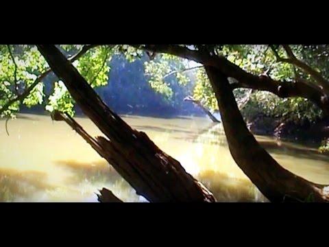 Kuruva Islands Wayanad Kuruva Island Wayanad a Short