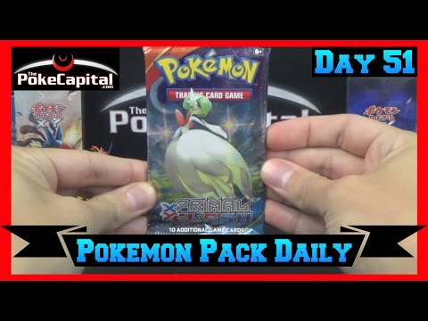 Pokemon Pack Daily Primal Clash Booster Opening Day 51