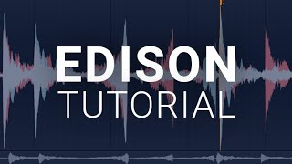 How To Use The Edison - FL Studio Tutorial