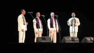 Светоглас- Тонкая рябина