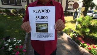 $5000 reward offered for 'crooks' who stole Tru...