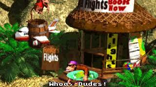 [TAS] Donkey Kong Country - Minimal Y Presses (World 3)
