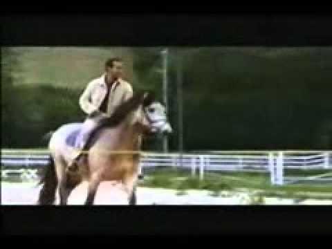 hindi ( Shahrukh Khan , Kajol , Aishwarya Rai ,Salman Khan-9 - music video clips(1).wmv