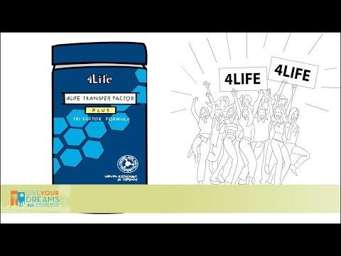 4life Transfer Factor Certificado