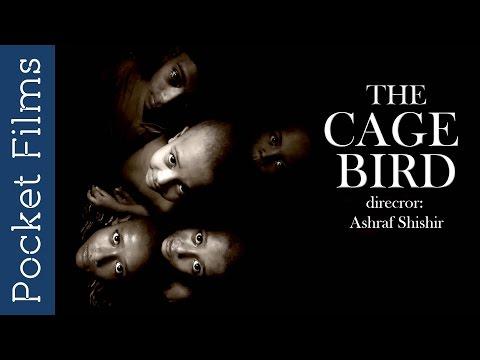 Cage - Modern Darkness