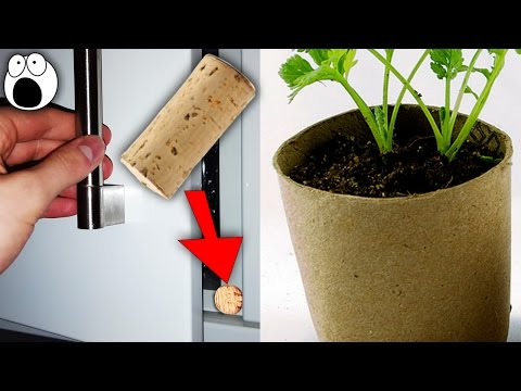 20 Best Reuse ideas from Used Everyday Items - Best out of wastes