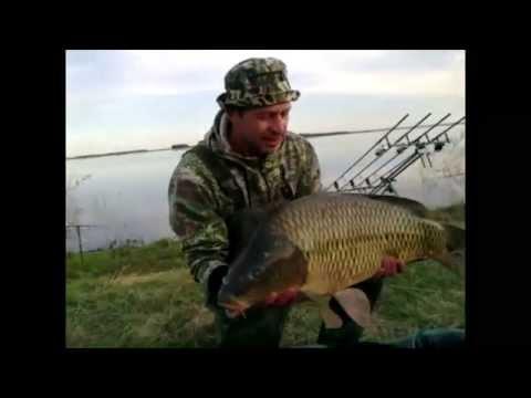 видео рыбалка карп казахстан