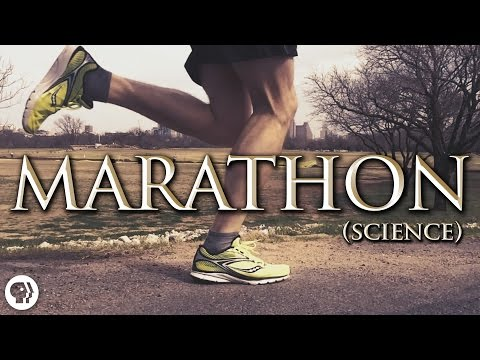 Science of Marathon Running   It's Okay To Be Smart   PBS Digital Studios