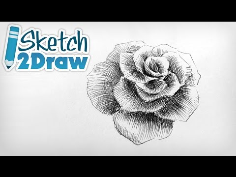 Doodling a Rose with Ball Point Pen