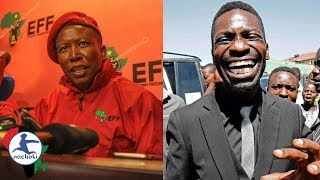 Malema Gives Hilarious Advice to Bobi Wine on How to Defeat Dictator Museveni