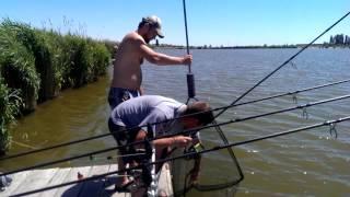 youtube видео все самое о рыбалке