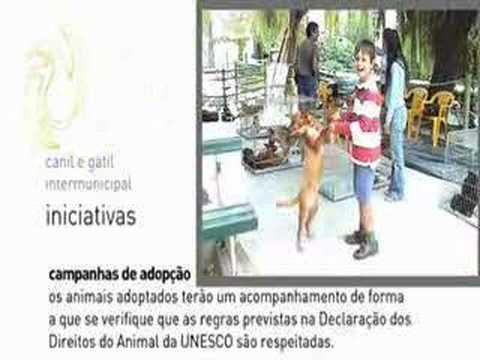 Canil/Gatil Intermunicipal de Torres Novas