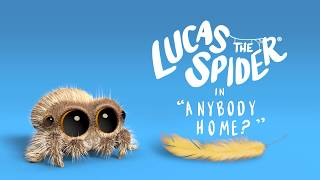 Lucas the Spider - Anybody Home?