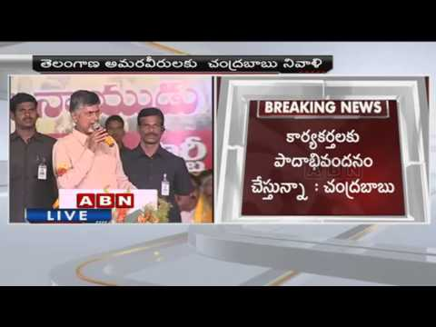 TDP worked hard for Telangana Formation  AP CM Chandrababu