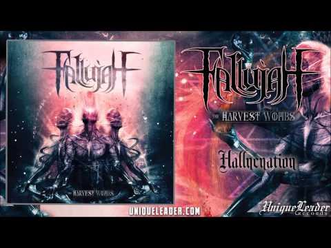 Fallujah - Hallucination