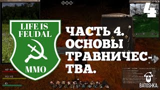 Life is feudal рецепты трав