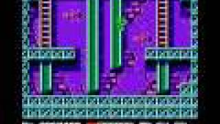 NES Longplay [004] Teenage Mutant Ninja Turtles
