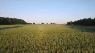 Über Den Feldern - Abendlicher Flug Mit Einer Phantom 3 Drohne