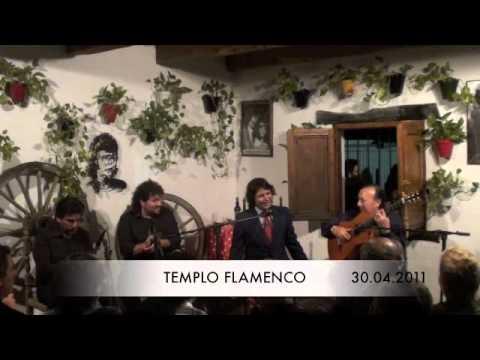 TEMPLO FLAMENCO ANTONIO REYES Y PACO CEPERO BULERIAS