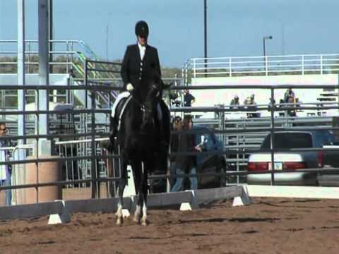 Arabian Stallion Mojave Kid Dressage 2nd Level Scottsdale 2012