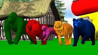 Learn Wild animals finger family song for kids,Lion | nursery rhymes,Gorilla,Tiger,Bear,arcusn media