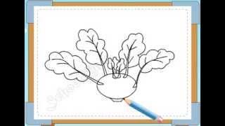 BÉ HỌA SĨ -Thực hành tập vẽ 141: Vẽ củ su hào