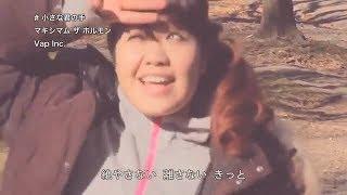 マキシマム ザ ホルモン 『小さな君の手』~『maximum the hormone 』 Music Video (再UP)