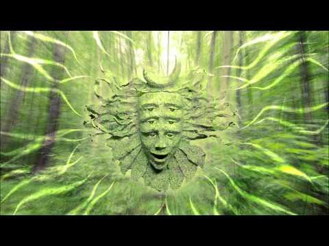 Shpongle - I Am You HD