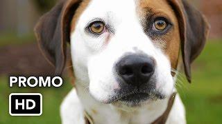 "Downward Dog (ABC) ""Critics"" Promo HD"