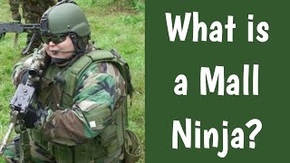 What is a Mall Ninja