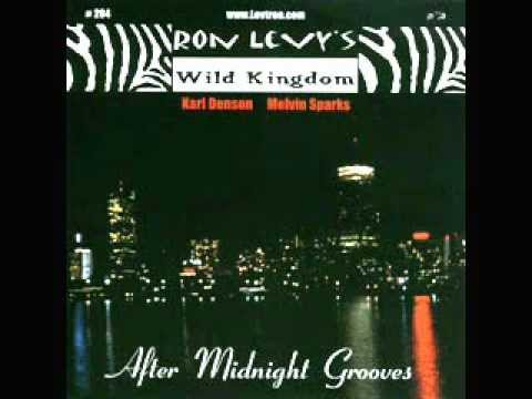 Ron Levy - After Midnight Groove.wmv