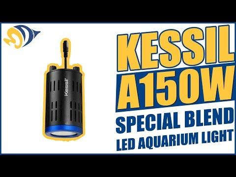 Kessil A150W Special Blend LED Aquarium Light Product Demo
