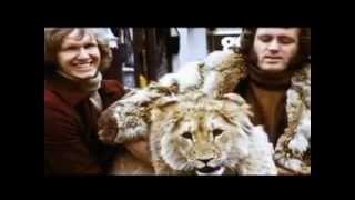 یک شیر و دو مرد