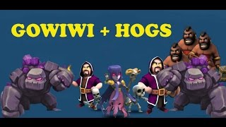 GOWIWI + Hogs