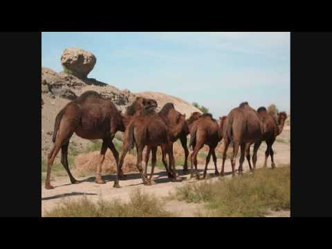 Turkmenistan Music And Images video